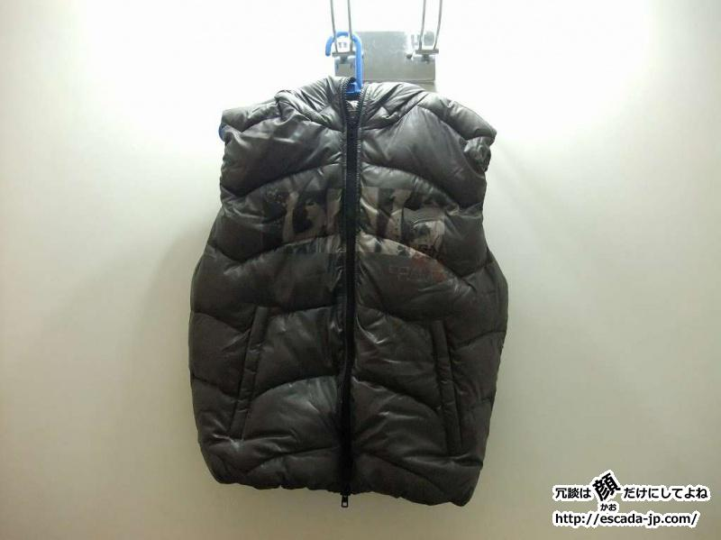 GAS DOWNVEST