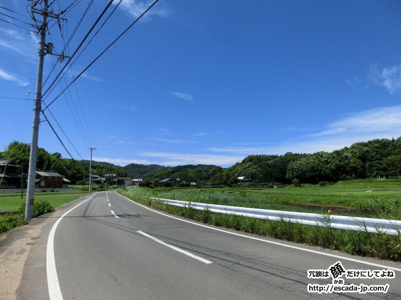 勝名寺へあじさい鑑賞03