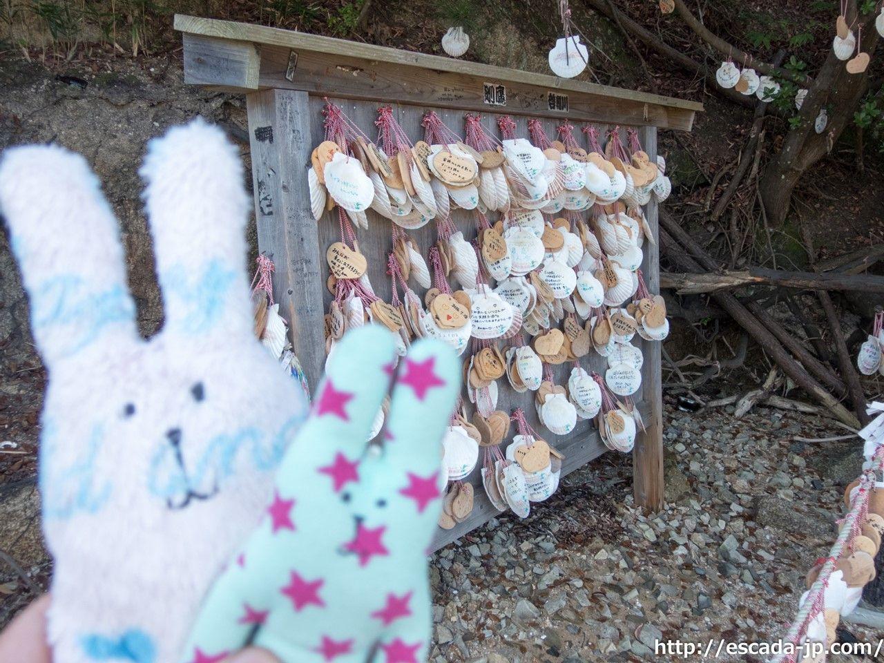 願いの貝殻