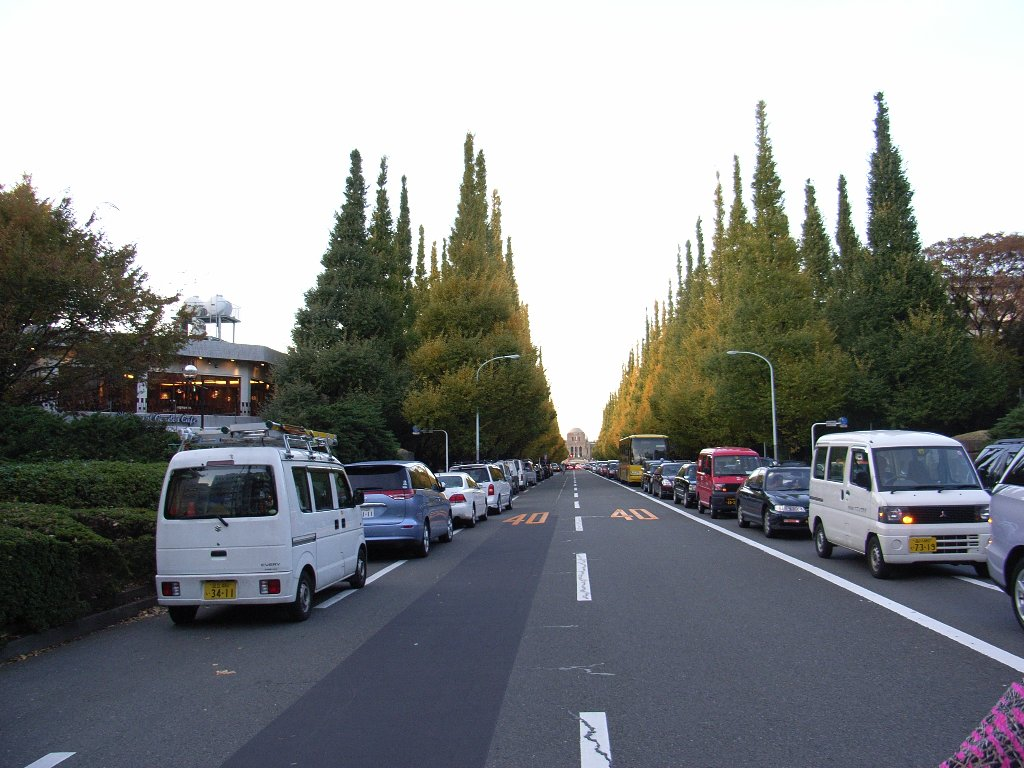 20081122_00.jpg