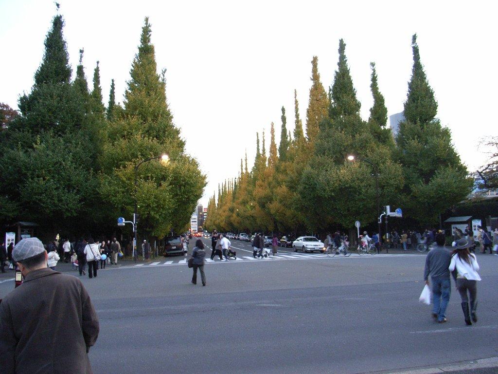 20081122_04.jpg